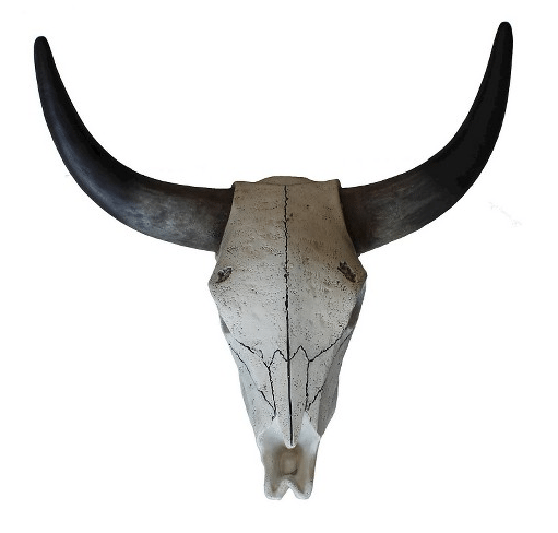 steer skull how to decorate a farmhouse living room